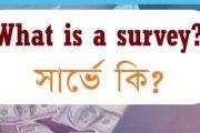 সার্ভে কি? What is a survey? কোন সাইটে সার্ভের কাজ করবেন?