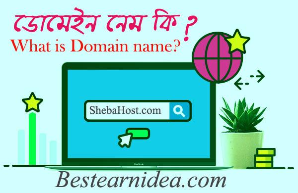 ডোমেইন নেম কি? What is Domain name?
